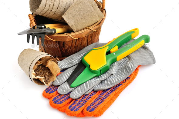 Gardening tools and seed on a white background - Stock Photo - Images