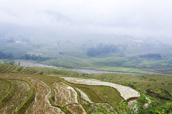 Sapa - Stock Photo - Images