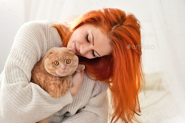 Beautiful young woman with red cat. Domestic cat Scottish Fold c - Stock Photo - Images