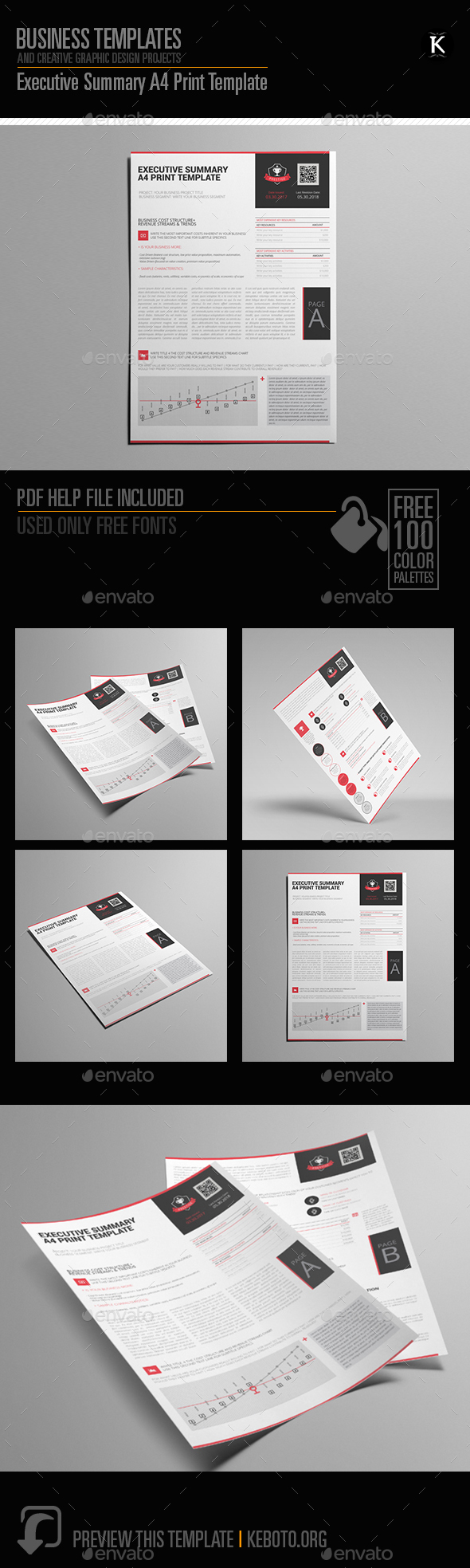 GraphicRiver Executive Summary A4 Print Template 21168672