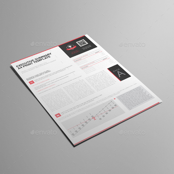 Executive Summary A Print Template By Keboto  Graphicriver