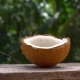 Supperslowmotion Shot of a Coconut Milk Getting Splashed Against the Background of Tropical Trees - VideoHive Item for Sale
