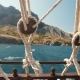 Ropes of a Floating Ship - VideoHive Item for Sale