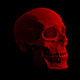 Red Human Skull Rotating - VideoHive Item for Sale