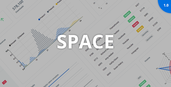 ThemeForest Space Responsive Admin Dashboard Template 21001607