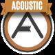 Upbeat Motivational Acoustic