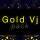 Gold VJ Pack - VideoHive Item for Sale