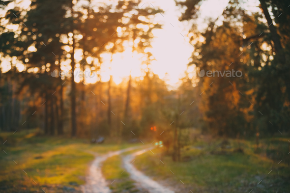 Abstract Autumn Blurred Forest Road At Sunset Or Sunrise Backgro - Stock Photo - Images