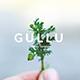 Gullu Creative Keynote Template