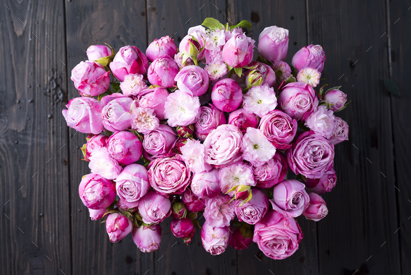 Valentines Day of pink Roses - Stock Photo - Images