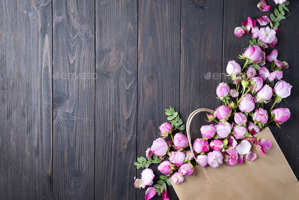 Frame of pink Roses - Stock Photo - Images