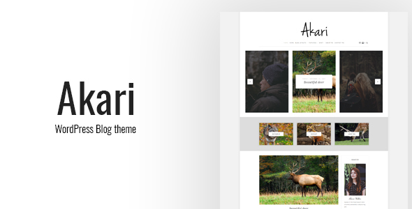 ThemeForest Akari Elegant WordPress Blog Theme 20941308