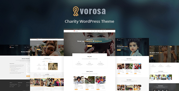 Image of Vorosa - Nonprofit Charity Hub Fundraising WordPress Theme