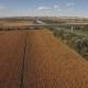 Fast Train Enters Bridge Near Cultivated Corn Field and River