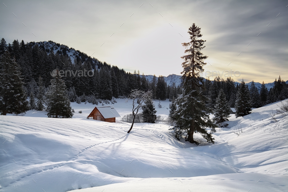 wooden cabin in snowy Alps - Stock Photo - Images