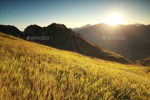 morning sunshine over high alpine meadow - Stock Photo - Images
