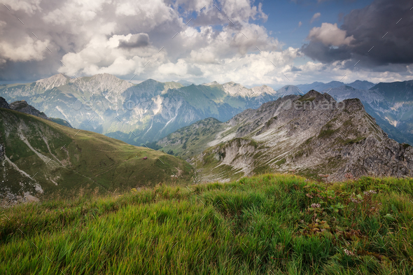 alpine green meadows in summer - Stock Photo - Images
