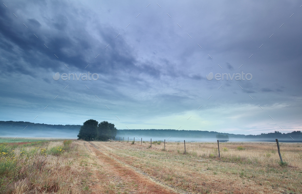 calm misty morning on Belgian countryside - Stock Photo - Images