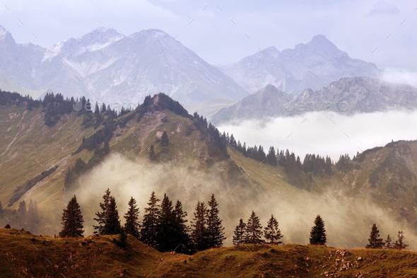 fog in mountains after rain - Stock Photo - Images