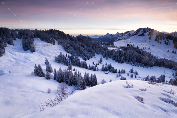 winter snowy mountains in dusk - Stock Photo - Images