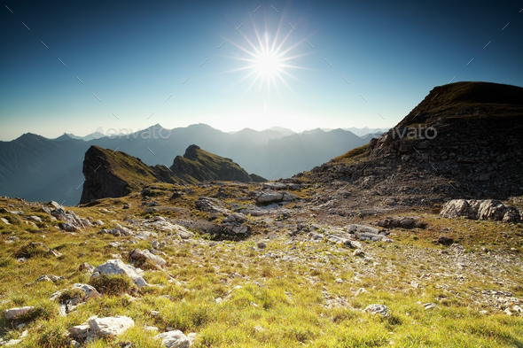 sunshine over alpine meadow - Stock Photo - Images