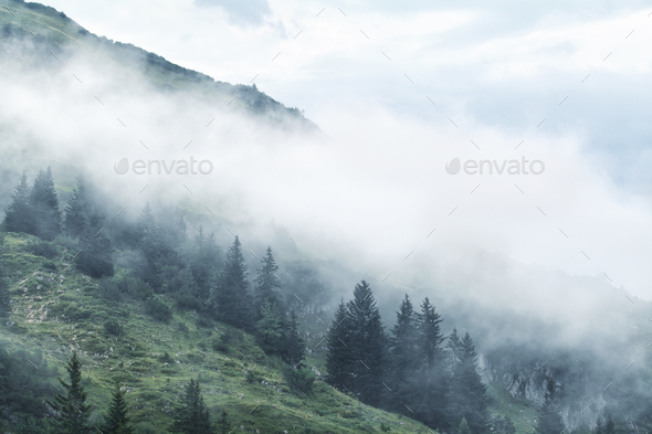 morning fog in mountains - Stock Photo - Images