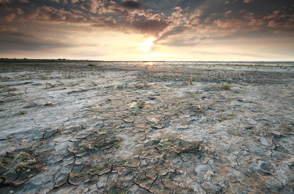 Wadden sea coast at low tide - Stock Photo - Images