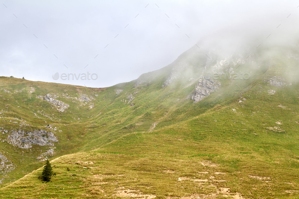 alpine hills in dense fog - Stock Photo - Images