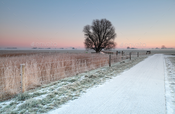 cycling road in snow at sunrise - Stock Photo - Images