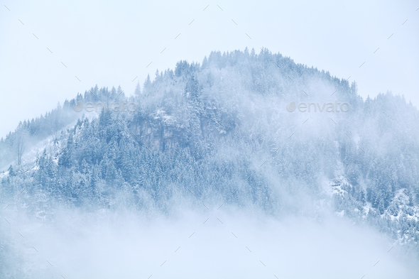 mountain top in snow and fog - Stock Photo - Images