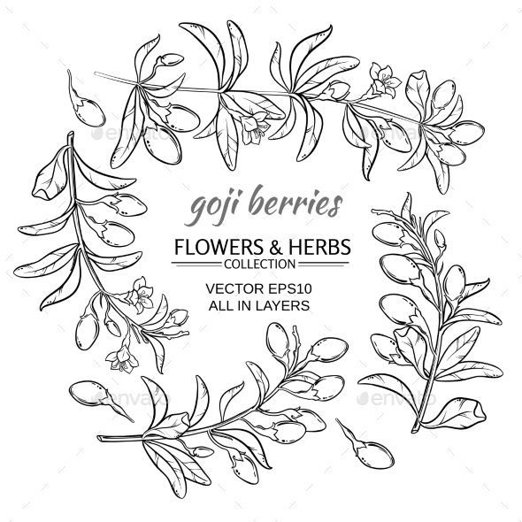 GraphicRiver Goji Berry Vector Set 21194516