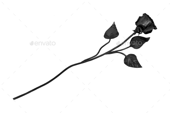 Forged rose on a white background - Stock Photo - Images