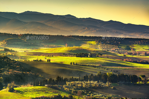 Maremma countryside, sunrise foggy landscape. Bibbona, Tuscany, - Stock Photo - Images