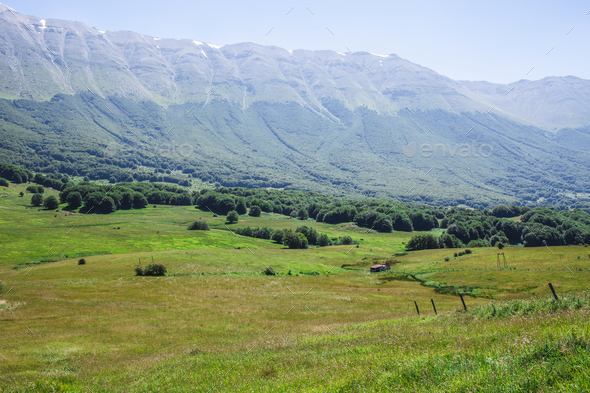 Green Landscape - Stock Photo - Images