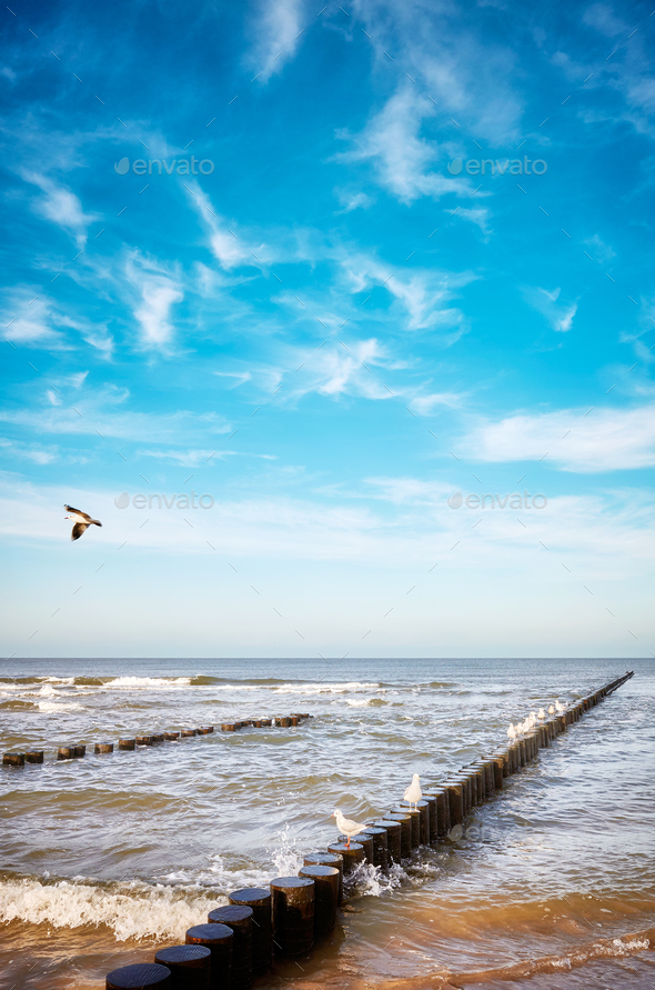 Old wooden groyne on a beach. - Stock Photo - Images