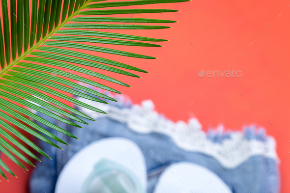 Tropical Background Palm Trees Branches - Stock Photo - Images