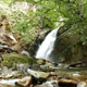 Waterfall At Rainforest - VideoHive Item for Sale
