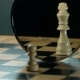 White Pawn White King on the Chess Board - VideoHive Item for Sale