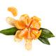 Fresh juicy mandarin isolated on white background. - PhotoDune Item for Sale