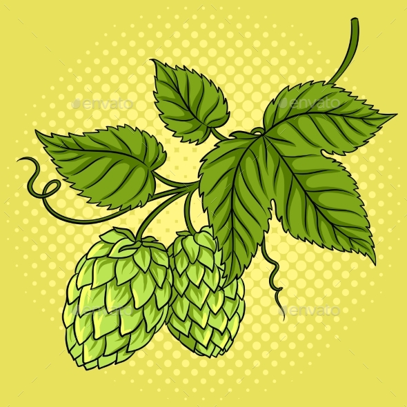 GraphicRiver Branch of Hops Pop Art Vector Illustration 21197868