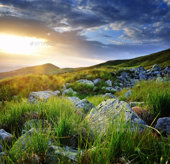 Beautiful summer landscape in the mountains. Sunrise. Carpathian - Stock Photo - Images