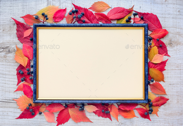 Autumn leaves composition with picture frame on a wooden backgro - Stock Photo - Images