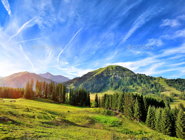 Beautiful summer mountain landscape in the Alps. Sunny morning - Stock Photo - Images