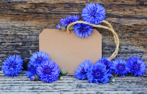 Paper tag with fresh cornflowers (Centaurea cyanus) on wooden ta - Stock Photo - Images