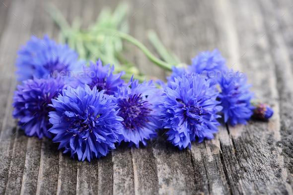 Cornflower blue flowers (Centaurea cyanus) on an old wooden tabl - Stock Photo - Images
