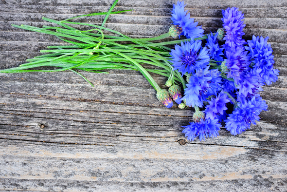 Cornflower blue flowers (Centaurea cyanus) on an old wooden tabl - Stock Photo - Images