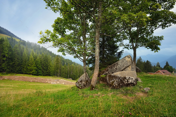 Beautiful summer mountain landscape - Stock Photo - Images