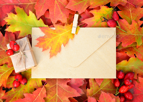 Colorful autumn background with envelope and oak leaves. Top vie - Stock Photo - Images
