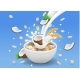 Oatmeal with Coconut Milk Pouring in a Bowl - GraphicRiver Item for Sale