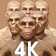 Human Evolution 3D  - VideoHive Item for Sale
